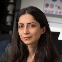 laleh najafizadeh rutgers university electrical computer engineering
